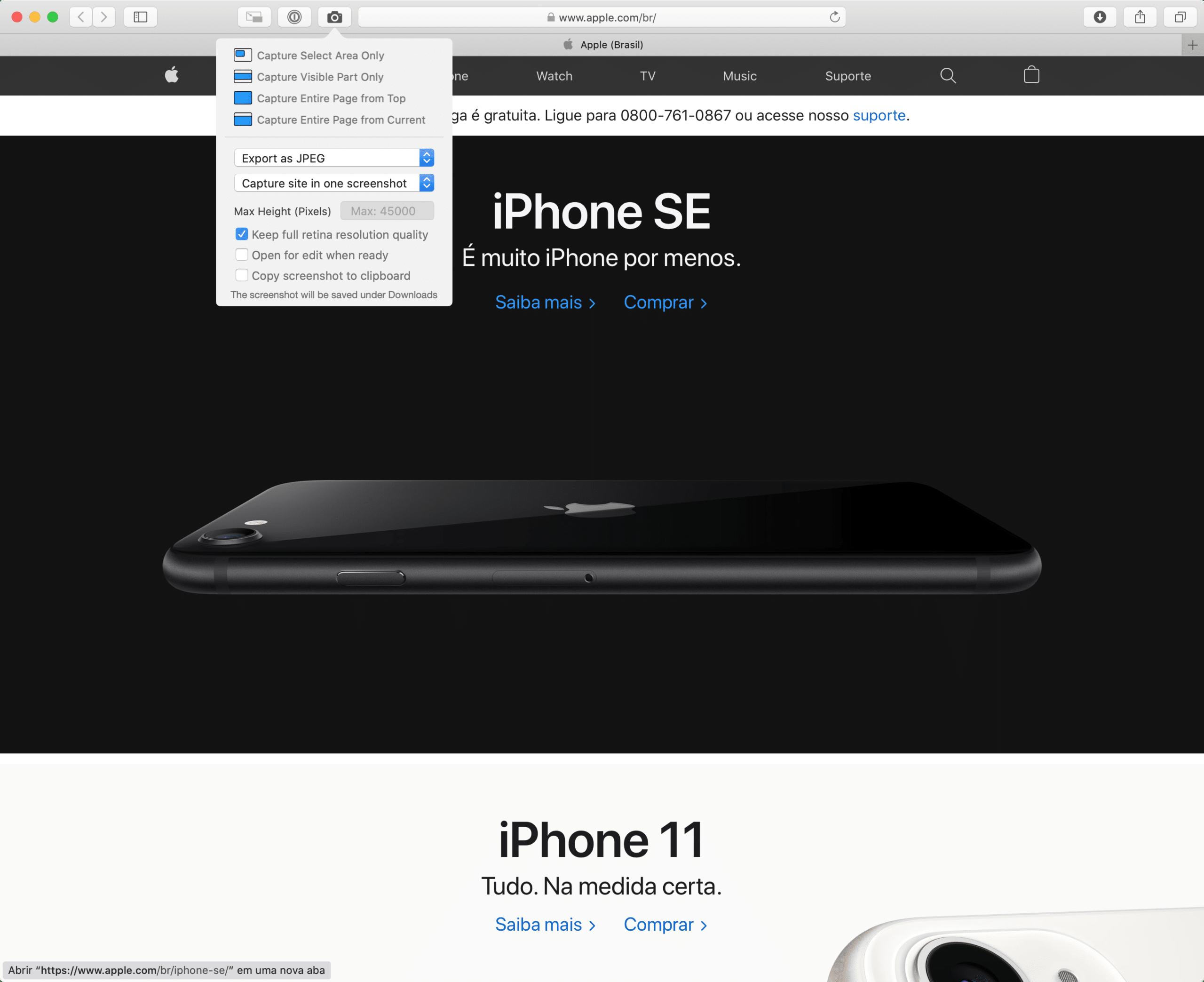 Page Screenshot for Safari
