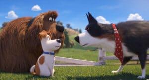 Filme - Pets - A Vida Secreta dos Bichos 2