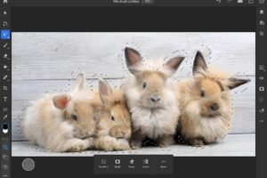 Refine Edge no Photoshop para iPad