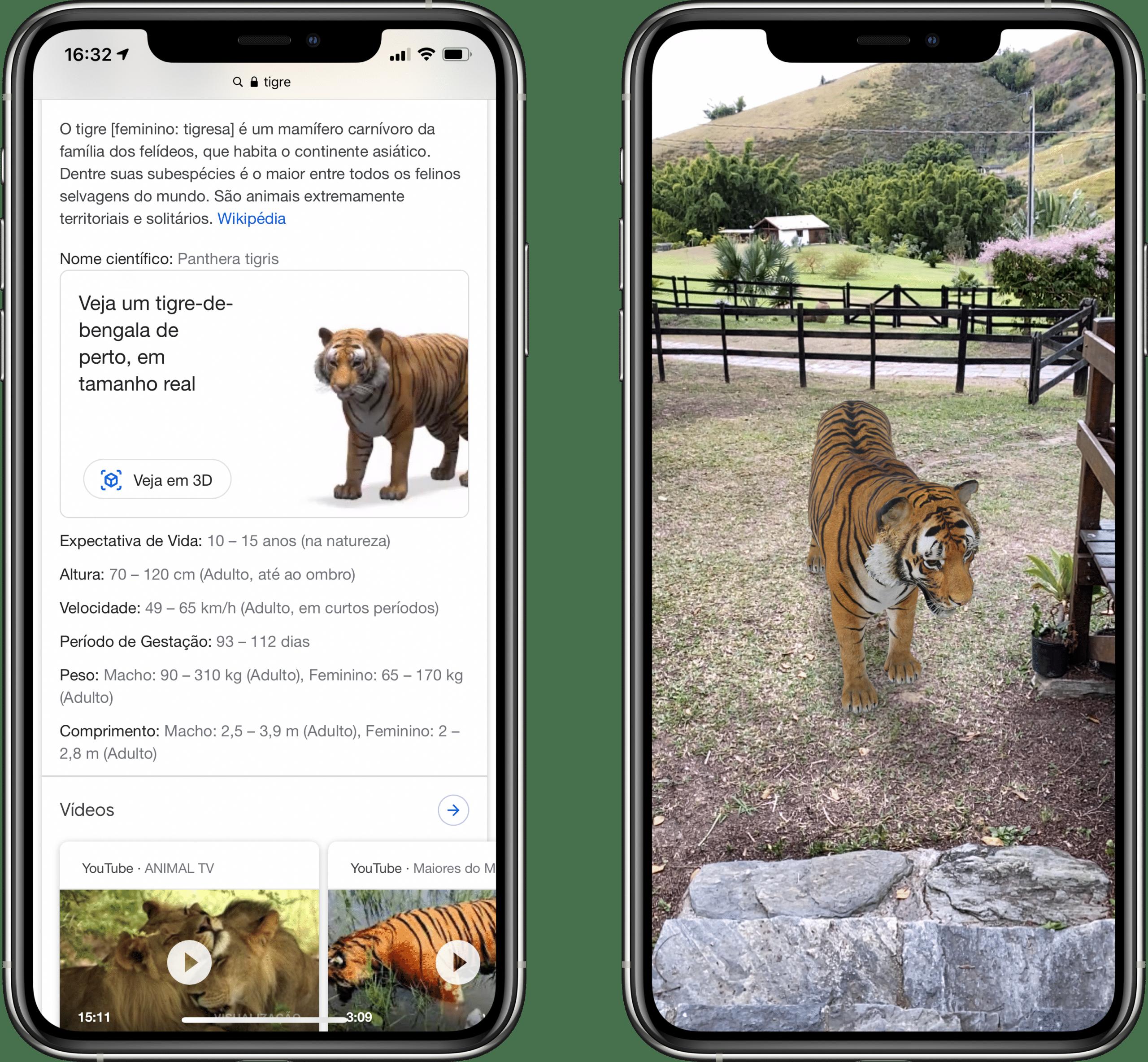Animais 3D em realidade aumentada do Google