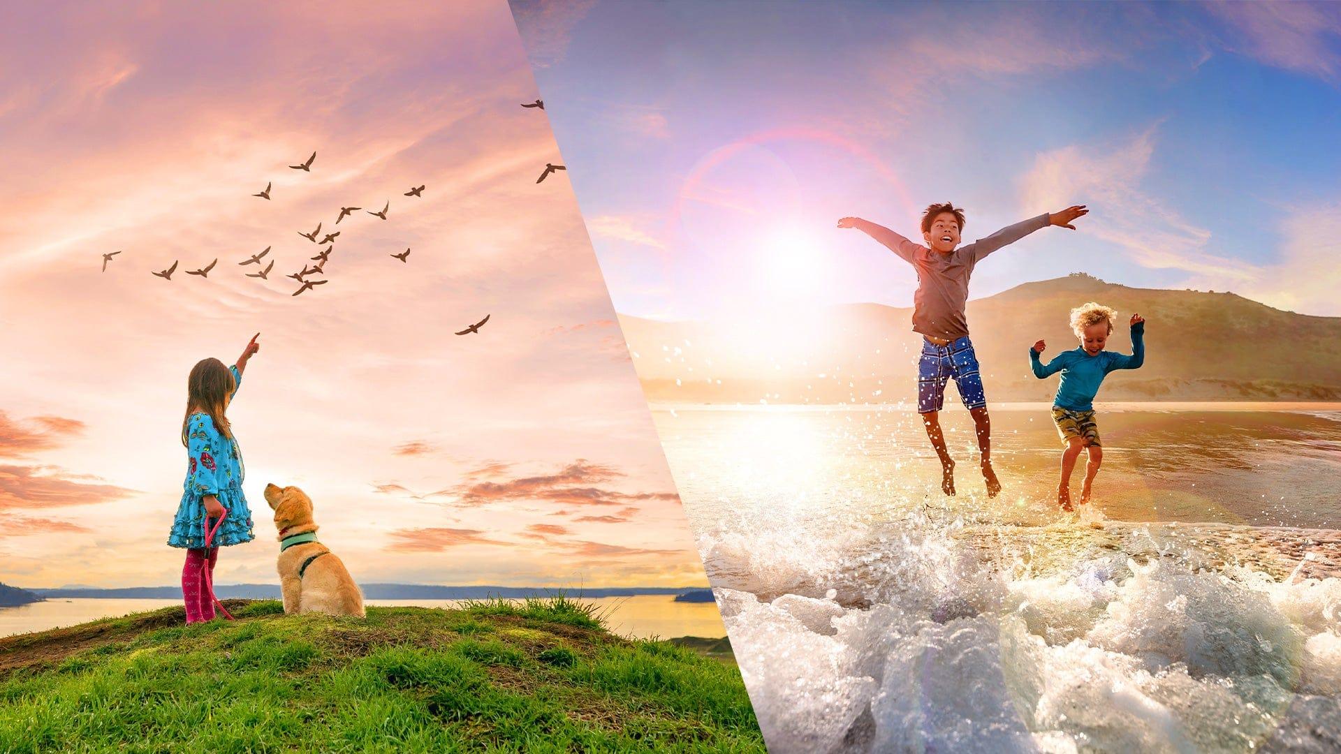 Adobe Photoshop Elements e Premiere Elements 2021