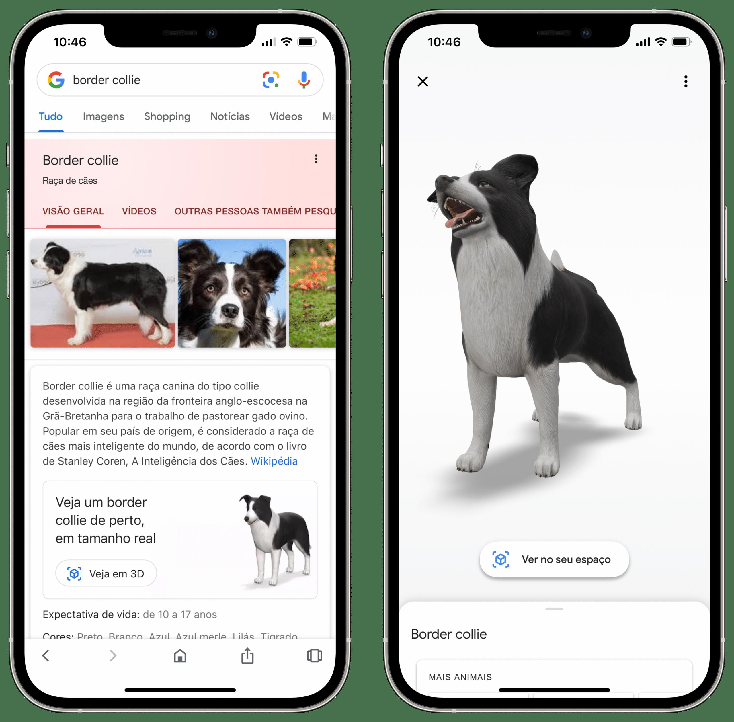 Animais em 3D do Google