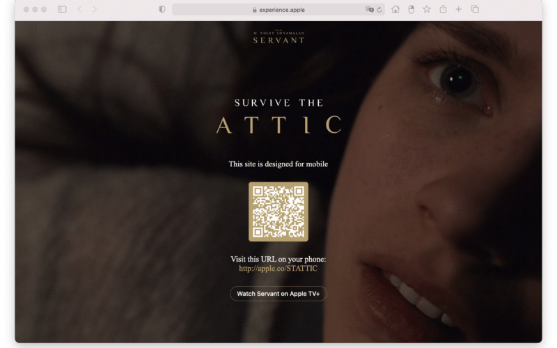 Survive the Attic