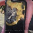 iPhone X que explodiu na Austrália