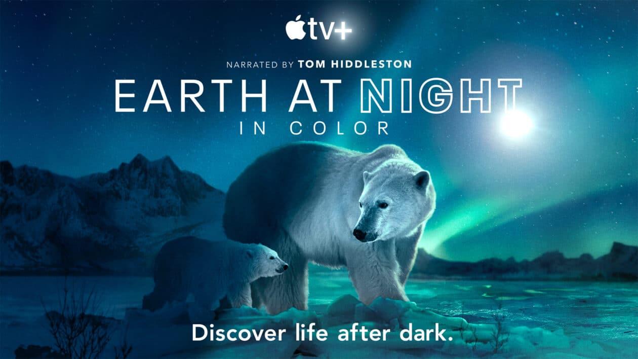 """""""Noite na Terra"""""""