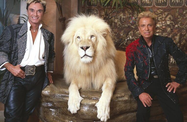 Dupla Siegfried & Roy com um leão branco