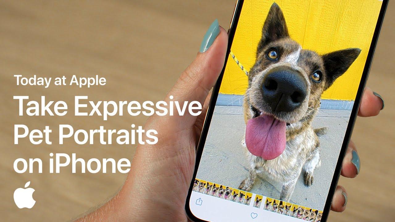 Today at Apple ensina como tirar fotos melhores do seu pet