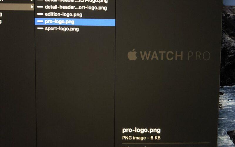"""""""Apple Watch Pro"""""""